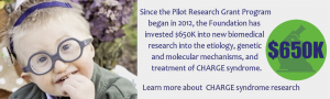 Since the Pilot Research Grant Program began in 2012, the Foundation has invested $500K into new biomedical research into the etiology, genetic and molecular mechanisms, and treatment of CHARGE syndrome.