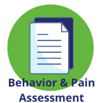 Behavior Pain Assessment