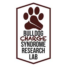 Bulldog Lab